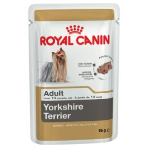 10 + 2 gratis! 12 x 85 g Royal Canin Breed - Yorkshire Terrier