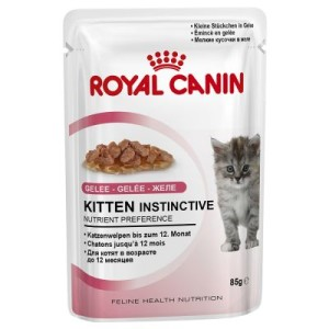 10 kg Royal Canin + 12 x 85 g Instinctive Soße/Gelee gratis! - British Shorthair Kitten (10 kg) + 12 x 85 g Instinctive in Gelee