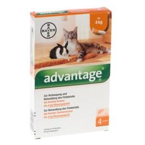 Advantage® für Katzen und Zierkaninchen - 40 mg: 4 Pipetten x 0