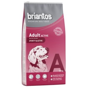 Briantos Adult Active - Sparpaket: 2 x 14 kg