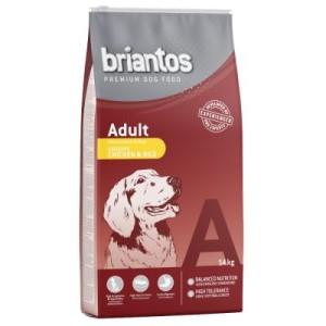 Briantos Adult Huhn & Reis - Sparpaket: 2 x 14 kg