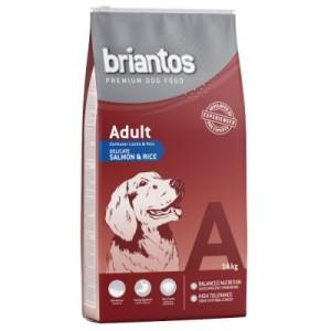 Briantos Adult Lachs & Reis - Sparpaket: 2 x 14 kg