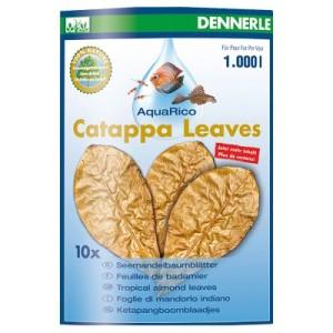 Dennerle Catappa Leaves - 10 Stück (ca. 24 g)