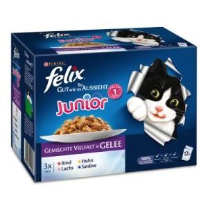 """Felix """"So gut wie es aussieht"""" Junior 12 x 100 g - gemischte Vielfalt"""