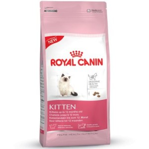 Gemischtes Probierpaket Royal Canin Kitten - Maine Coon Kitten bis zum 15. Monat (4 kg)