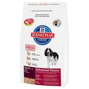 Hill's Canine Adult Lamm mit Reis Hundefutter - Sparpaket: 2 x 12 kg