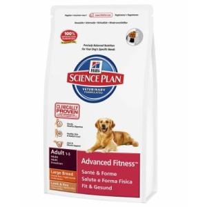Hill's Canine Adult Large Breed Lamm & Reis Hundefutter - Sparpaket: 2 x 12 kg