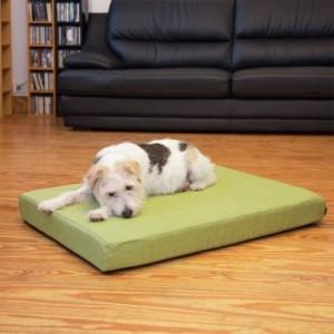Hundekissen mit Möbelstoff grün - L 100 x B 70 x H 8 cm