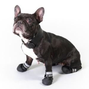 Hundeschuhe S & P Boots - Größe M (4)