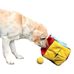 Hundespielzeug Plüschwürfel mit 4 Spielbällen - L 21 x B 21 x H 21 cm