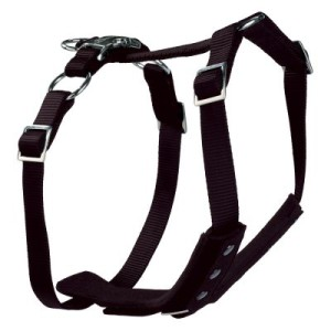 Hunter Autosicherheitsgeschirr Easy Comfort - Größe L: Bauchumfang 60 - 75 cm