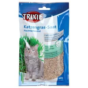 Katzengras Nachfüllbeutel - 3 x 100 g