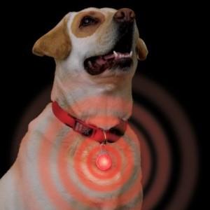 Nite Ize Sicherheitsanhänger Karabiner LED - rotes Licht
