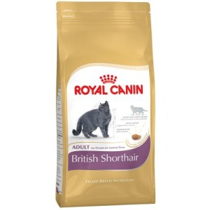 Royal Canin British Shorthair Adult - Sparpaket 2 x 10 kg