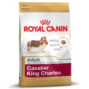 Royal Canin Cavalier King Charles Adult - Sparpaket: 2 x 7