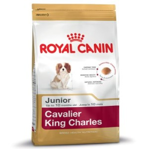 Royal Canin Cavalier King Charles Junior - 1