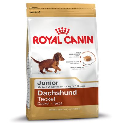 Royal Canin Dachshund Junior - Sparpaket: 3 x 1
