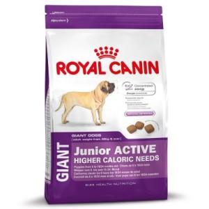 Royal Canin Giant Junior Active - Sparpaket 2 x 15 kg