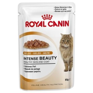 Royal Canin Intense Beauty in Gelee - 24 x 85 g