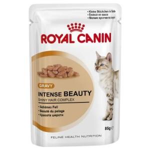 Royal Canin Intense Beauty in Soße - 48 x 85 g