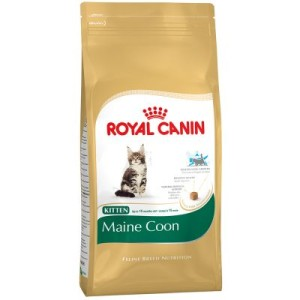 Royal Canin Maine Coon Kitten - 4 kg