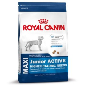 Royal Canin Maxi Junior Active - 15 kg