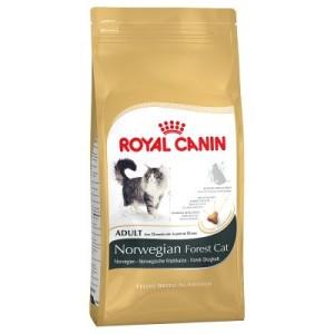Royal Canin Norwegische Waldkatze Adult - 10 kg