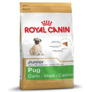 Royal Canin Pug Junior - 1