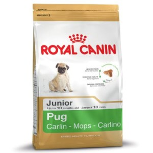 Royal Canin Pug Junior - Sparpaket: 3 x 1