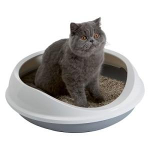 Savic Katzentoilette Figaro - grau/weiß