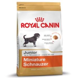 Sparpaket Royal Canin 2 x Großgebinde - Miniature Schnauzer Junior (3 x 1