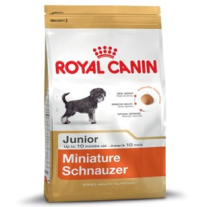 Sparpaket Royal Canin 2 x Großgebinde - Shih Tzu Junior (3 x 1