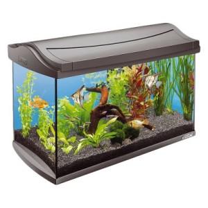Tetra AquaArt Aquarium Komplett-Set 60 l - Maße: L 61