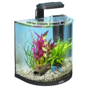 Tetra AquaArt Explorer Line Halfmoon Aquarium-Komplett-Set - 30 L