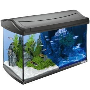 Tetra AquaArt LED Aquarium Komplett-Set 60 L - Maße: L 61