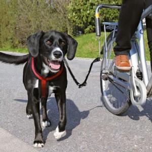 Trixie Biker-Set de Luxe - Fahrradhalter