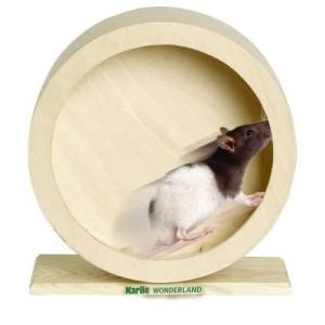 Wonderland Bogie Wheel Holzlaufrad - Ø 15 cm